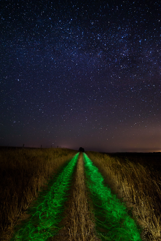 Enlightened Cosmos