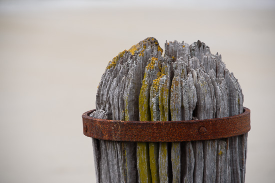 Weathered Tides