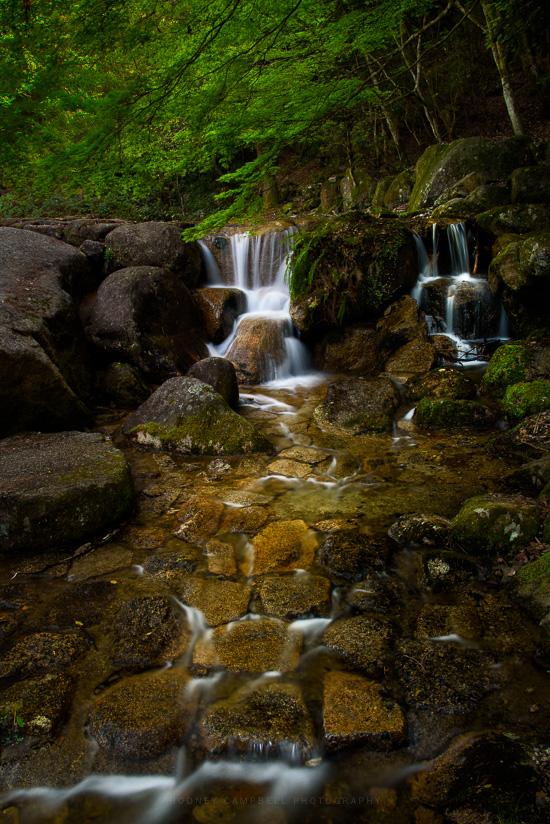 Miyajima Flow