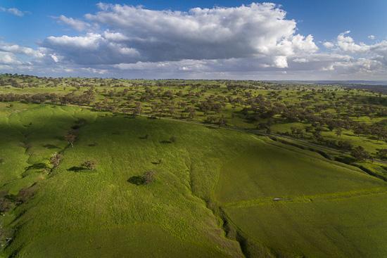 Coolah Pastures
