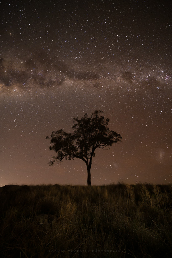 Tree of Thirds