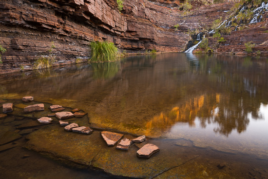 Fortescue Reflect