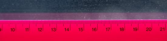 Nikon Z 24-200mm f/4-6.3 VR @ 200mm near MFD (~0.5m)