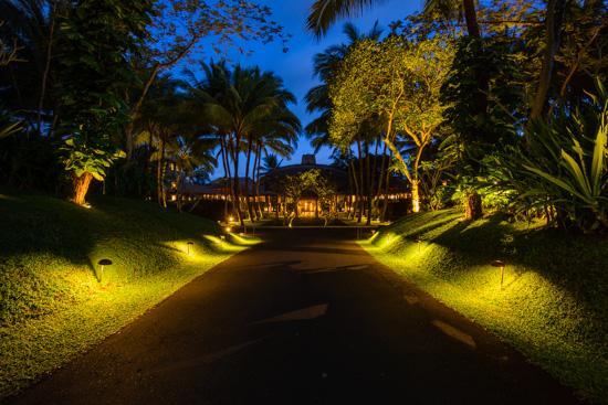 Twilight Entrance