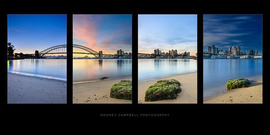 Rising Sydney - A Quadriptych