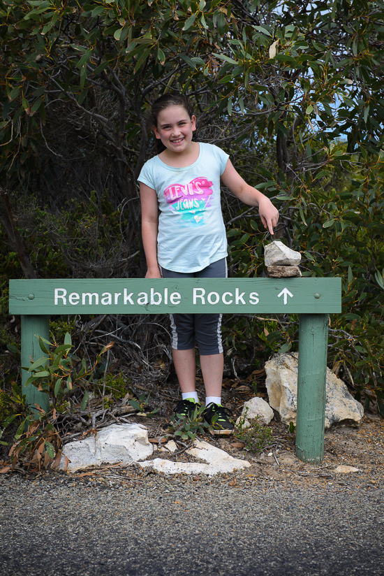 Really Remarkable Rocks