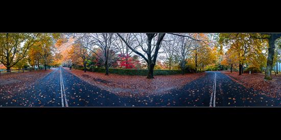 Mt Wilson in Autumn
