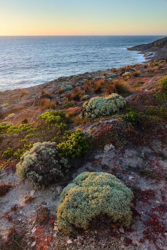 Cape Du Couedic Colour