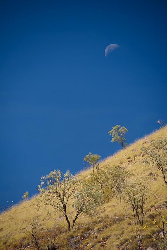 Lunarscape