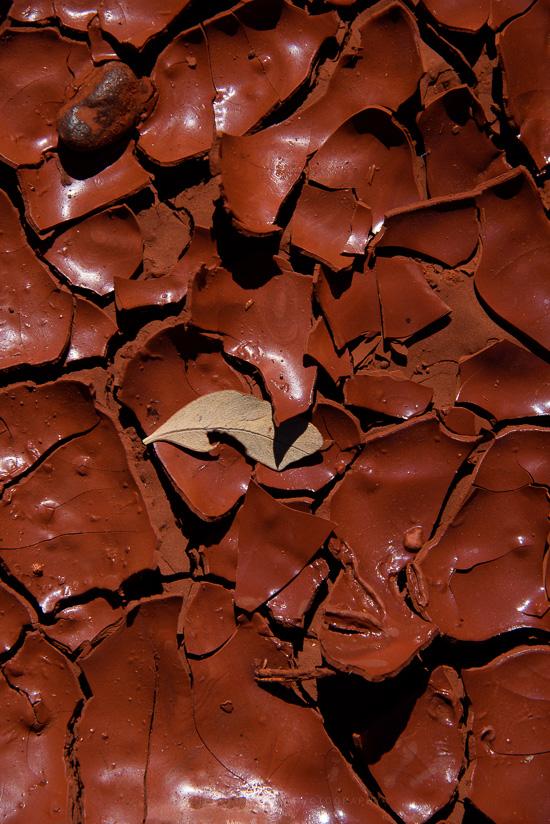 Leaving Chocolates